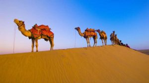 Exotic Royal Rajasthan Tour